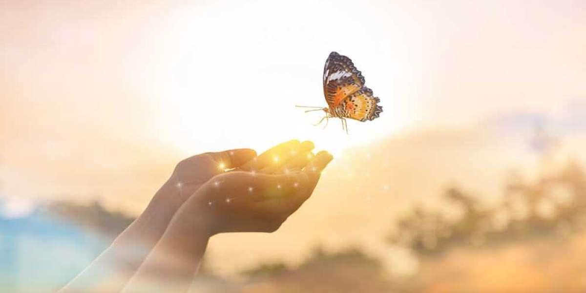 Creating a Healing Environment